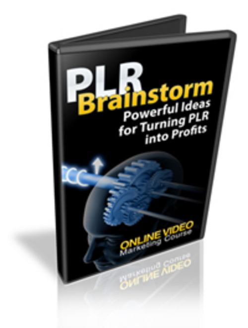 Product picture PLR Brainstorm Video Series